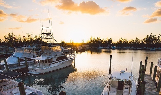 Davis-Harbour.jpg